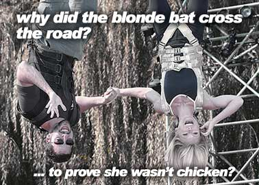 Blaine finds a blonde bat on the roof...